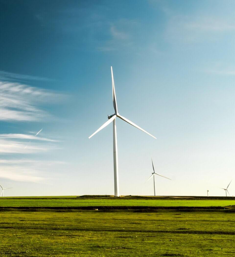 Sustainability & Impact